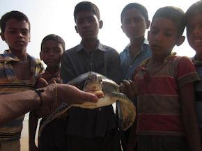 Volunteer in India (www.cadip.org)